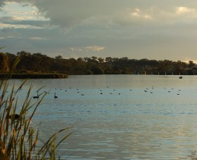 Lake Inverell Reserve - Accommodation Tasmania