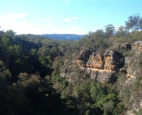 Ferntree Gully Reserve - Accommodation Tasmania