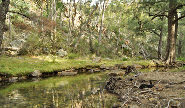 Capertee National Park - Accommodation Tasmania