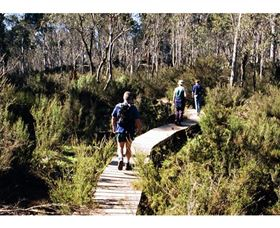 Hume and Hovell Walking Track - Henry Angel Trackhead - Accommodation Tasmania