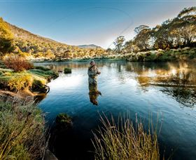 Fly Fishing Tumut - Accommodation Tasmania