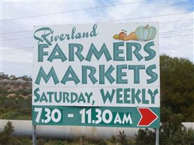 Riverland Farmers Market - Accommodation Tasmania