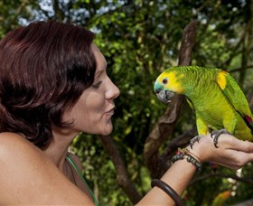Birdworld Kuranda - Accommodation Tasmania