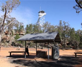 Pilliga Forest Lookout Tower - Accommodation Tasmania