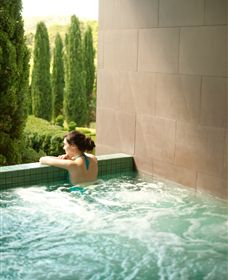 The Mineral Spa - Accommodation Tasmania