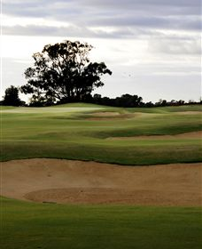 Black Bull Golf Club - Accommodation Tasmania