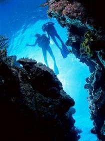Caves and Canyons Dive Site