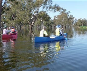 Doodle Cooma Swamp - Accommodation Tasmania