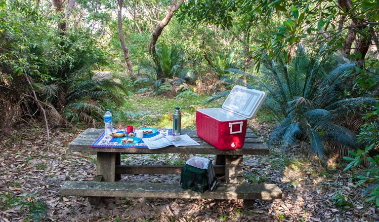 Little Llangothlin picnic area - Accommodation Tasmania