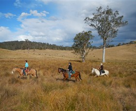 Chapman Valley Horse Riding - Accommodation Tasmania