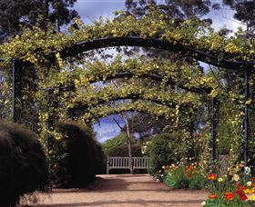 Blue Mountains Botanic Garden - Accommodation Tasmania