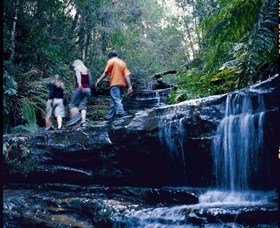 South Lawson Waterfall Circuit - Accommodation Tasmania