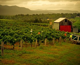 Around Hermitage Wine and Food Trail Hunter Valley - Accommodation Tasmania