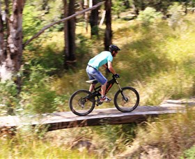 The Steps Mountain Bike Park - Accommodation Tasmania