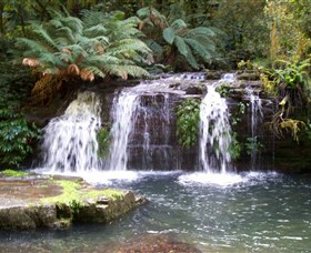 Barrington Tops National Park Walks - Accommodation Tasmania