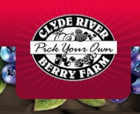 Clyde River Berry Farm - Accommodation Tasmania