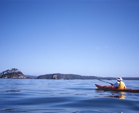 Kayaking Batemans Bay - Accommodation Tasmania