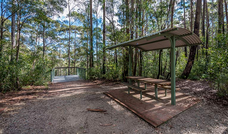 Big Nellie lookout and picnic area