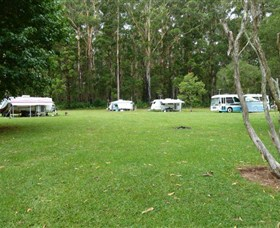 Coopernook Forest Park - Accommodation Tasmania