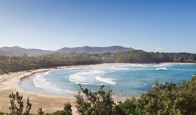 Coffs Coast Regional Park - Accommodation Tasmania