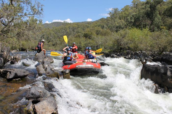 Rafting Australia - Accommodation Tasmania