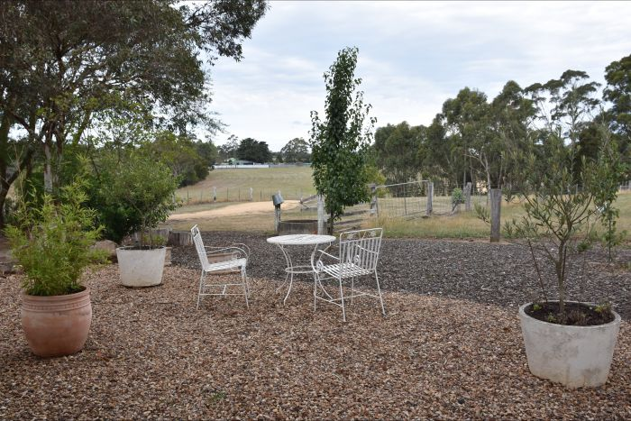 Cygnet Park Country Retreat - Accommodation Tasmania