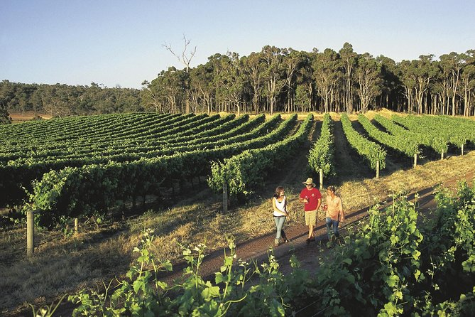Margaret River Caves Wine and Cape Leeuwin Lighthouse Tour from Perth - Accommodation Tasmania