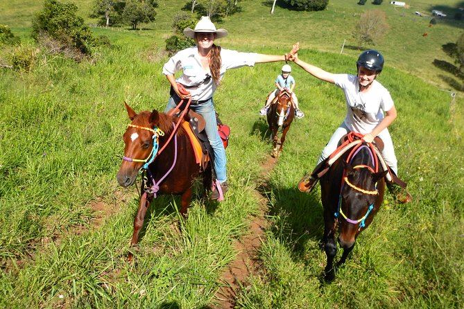 Country Day Ride from Mt Goomboorian with Rainbow Beach Horse Rides - Accommodation Tasmania