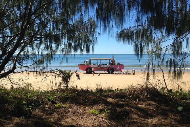 1770 Coastline Tour by LARC Amphibious Vehicle Including Picnic Lunch - Accommodation Tasmania
