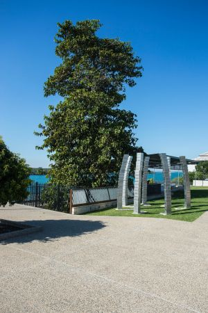 A Cup of Culture in Mackay - Accommodation Tasmania