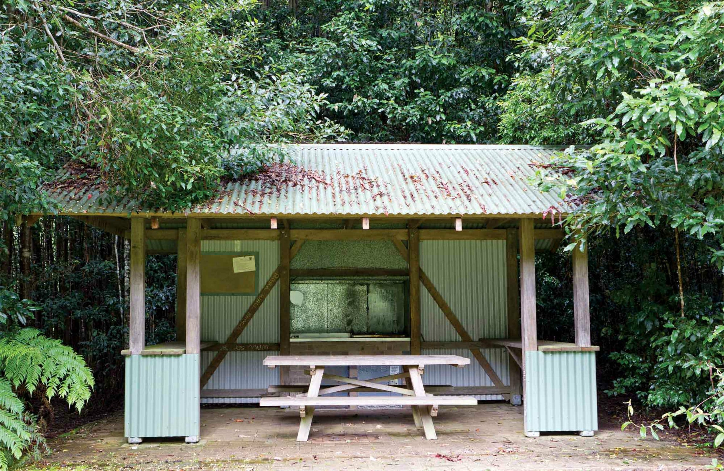 Coachwood Picnic Area - Accommodation Tasmania