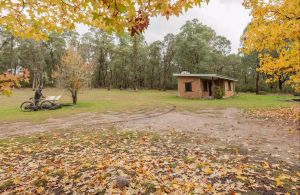 Major Clews Hut Walking Track - Accommodation Tasmania