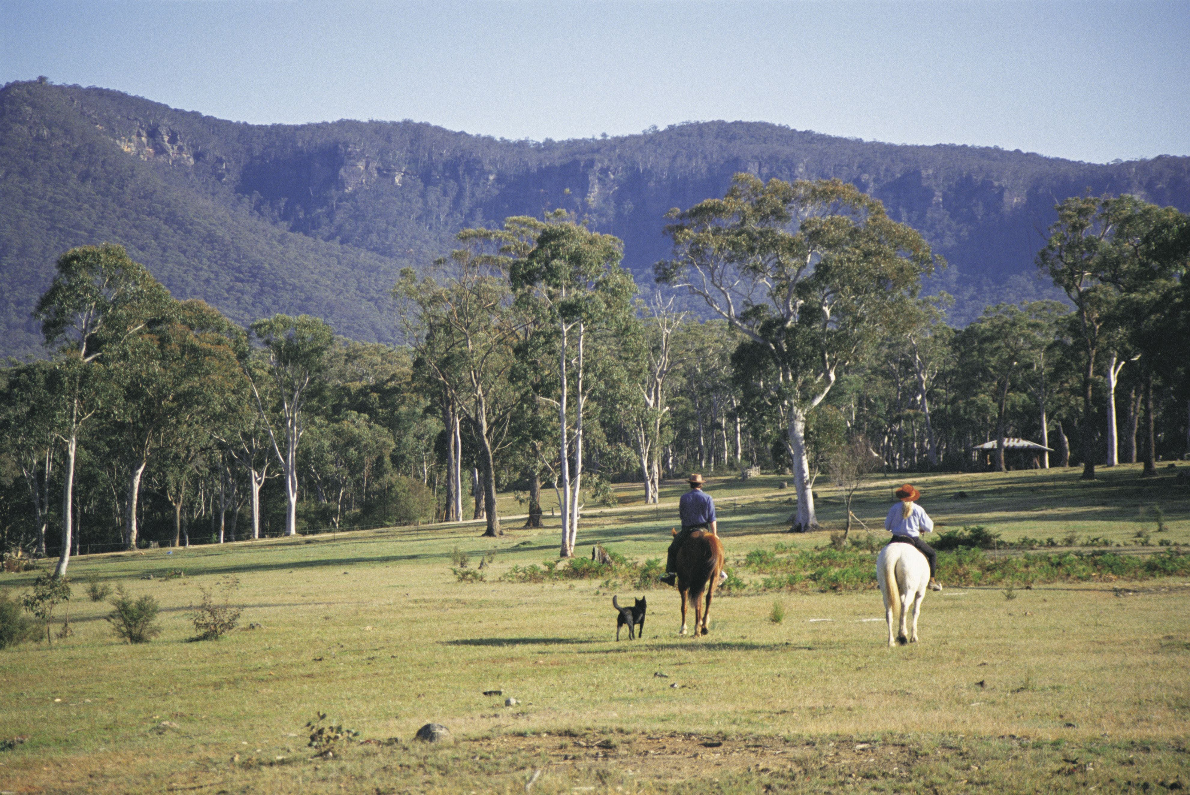 Megalong Valley - Accommodation Tasmania