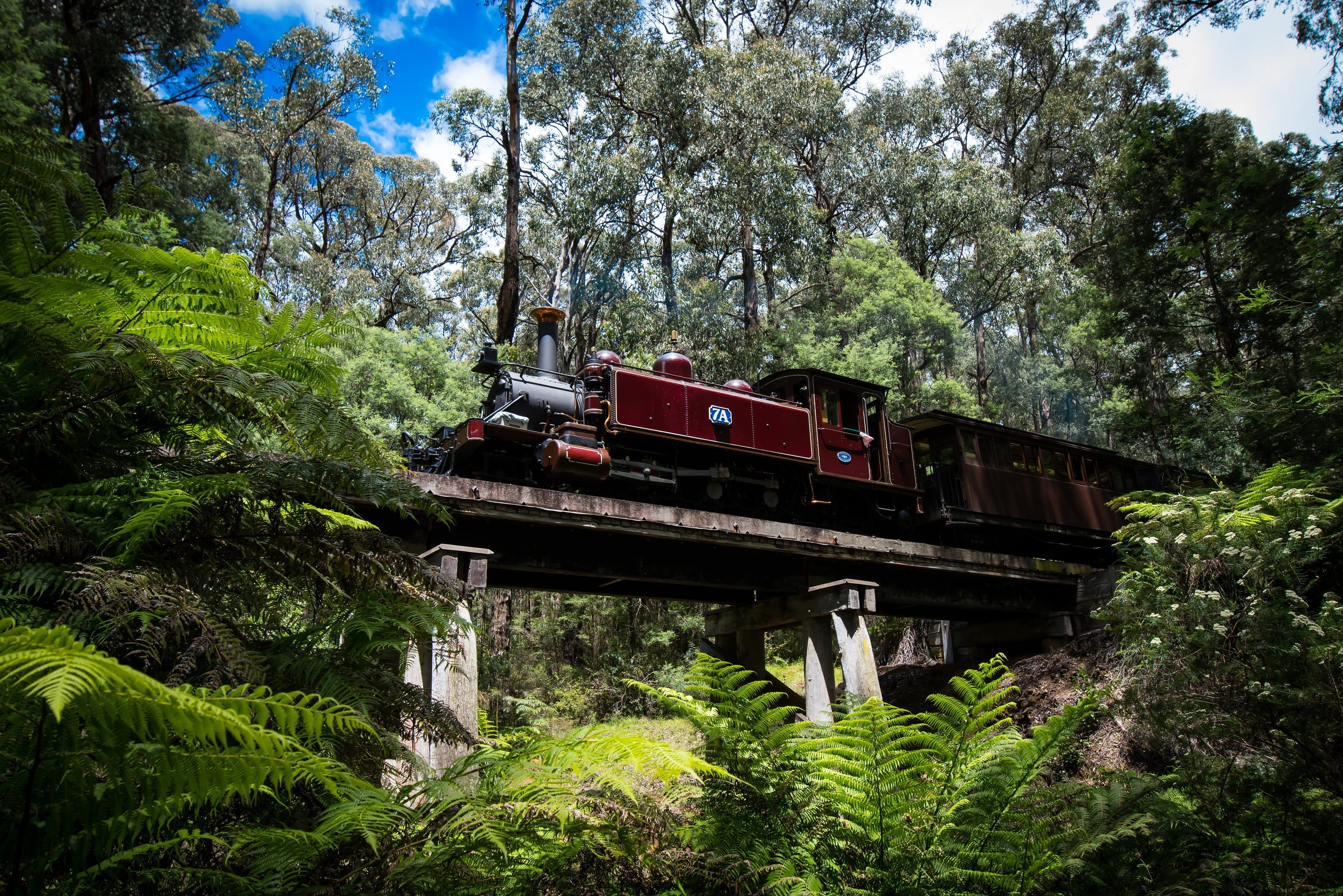 Puffing Billy Railway - Accommodation Tasmania