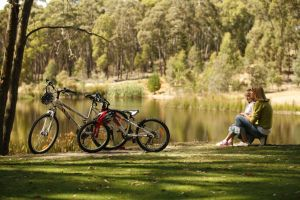 Creswick Regional Park - Accommodation Tasmania