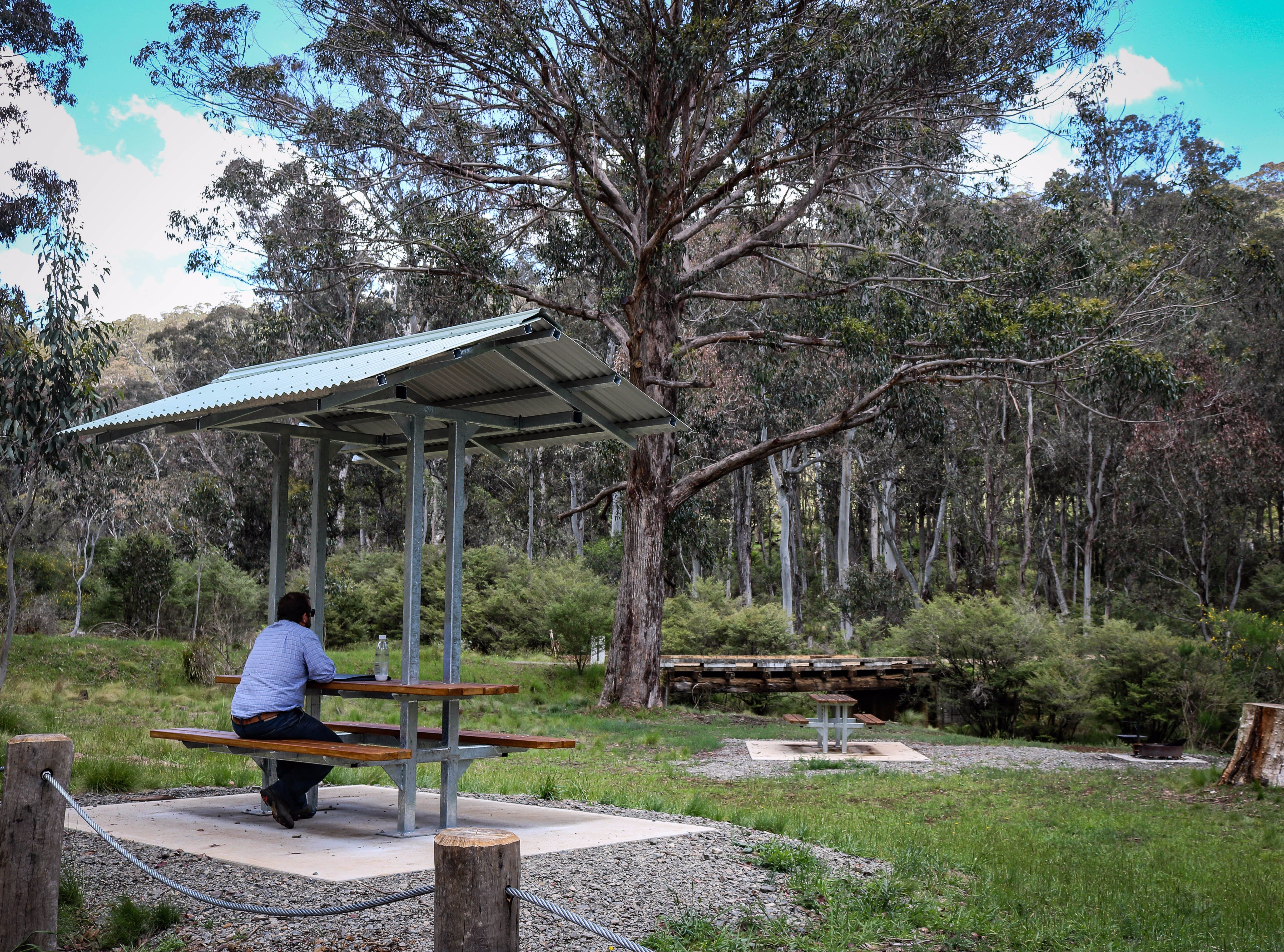 Barrington Tops State Forest - Accommodation Tasmania