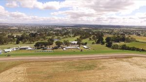 Colac Turf Club - Accommodation Tasmania