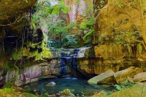 Glimpse of the Outback 5 Day Tour - Roma and Surrounds - Accommodation Tasmania