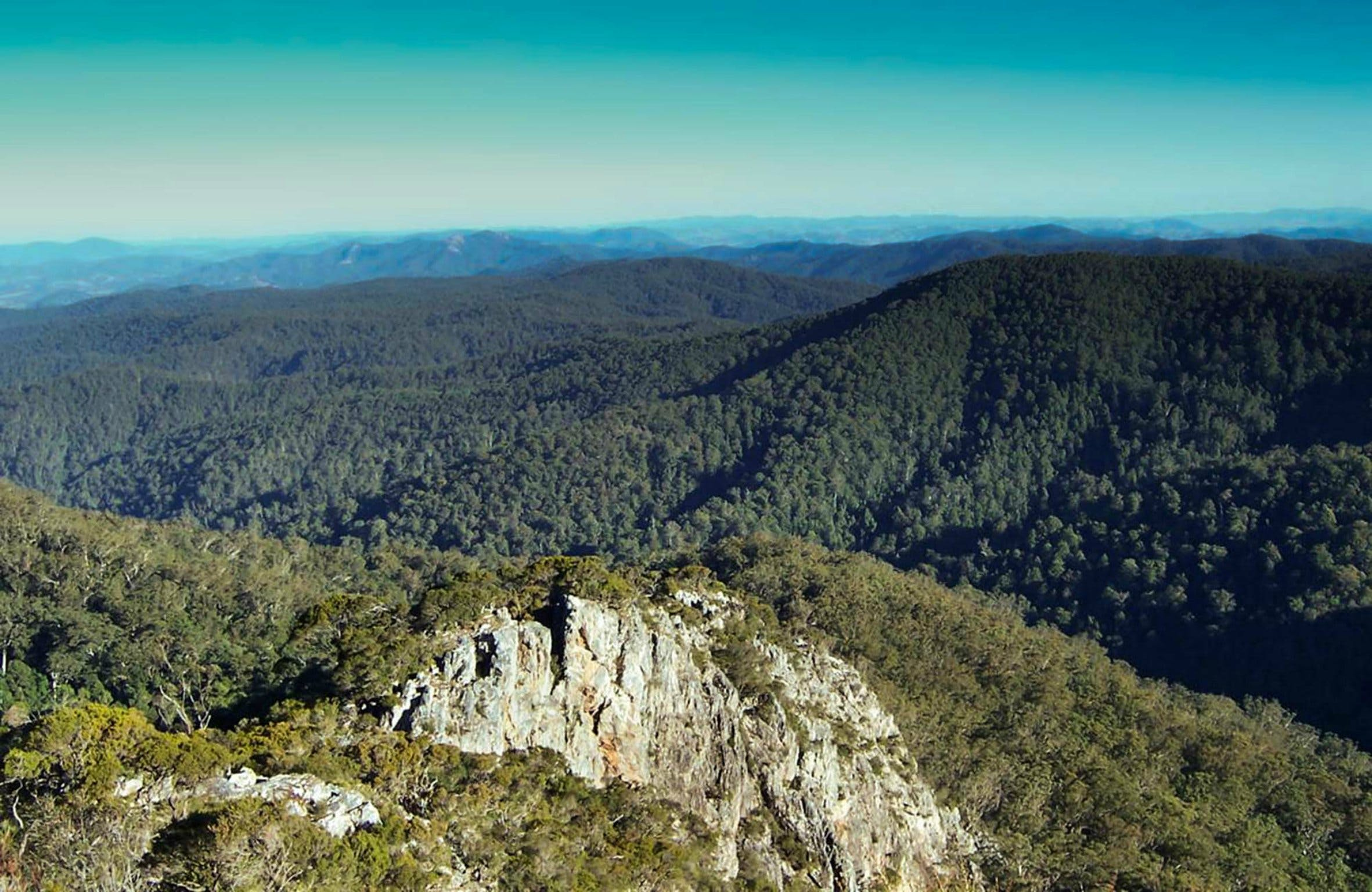 Tapin Tops National Park - Accommodation Tasmania