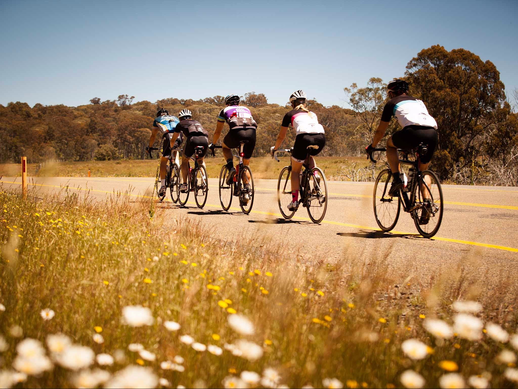 7 Peaks Ride - Dinner Plain - Accommodation Tasmania