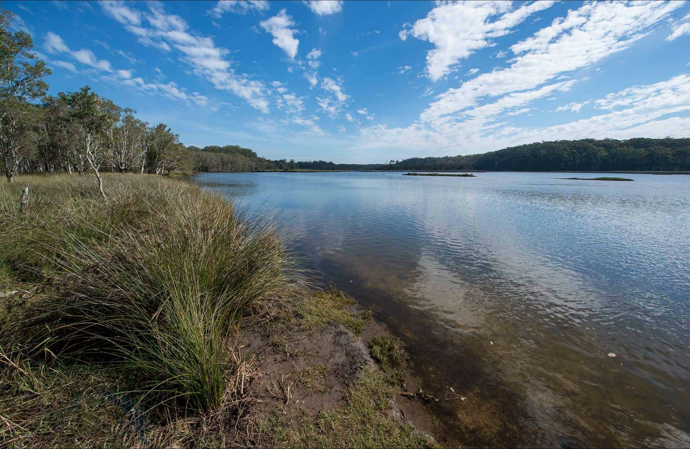 Lake Innes Nature Reserve - Accommodation Tasmania