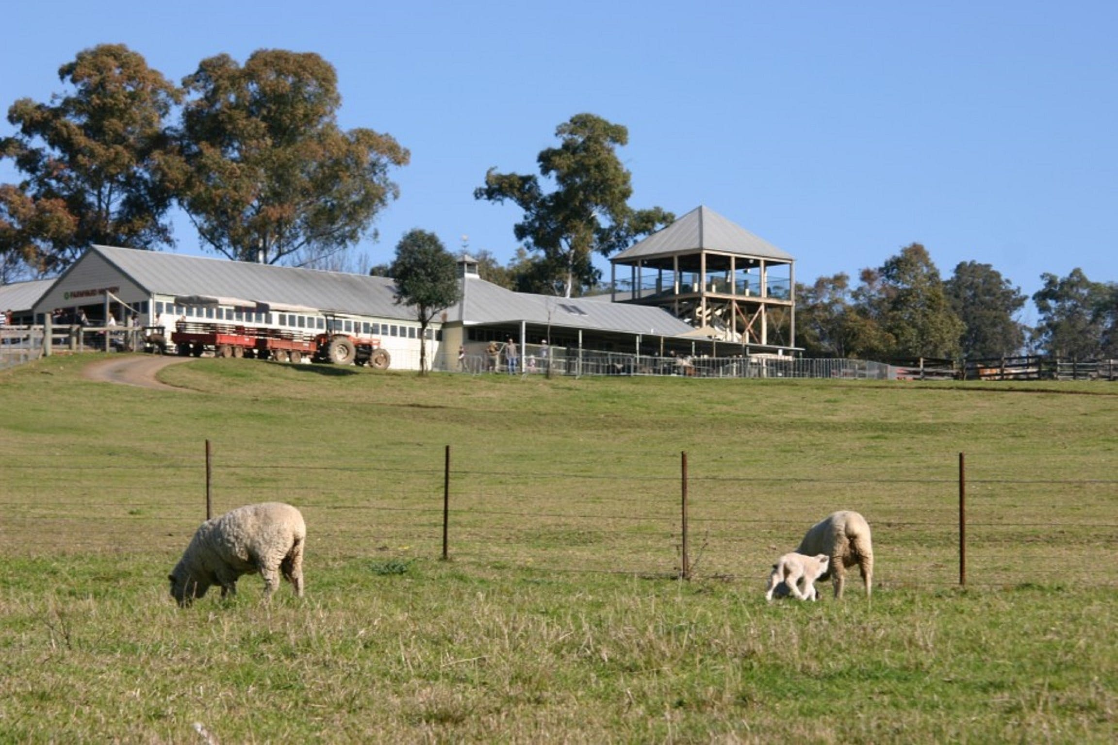 Calmsley Hill City Farm - Accommodation Tasmania