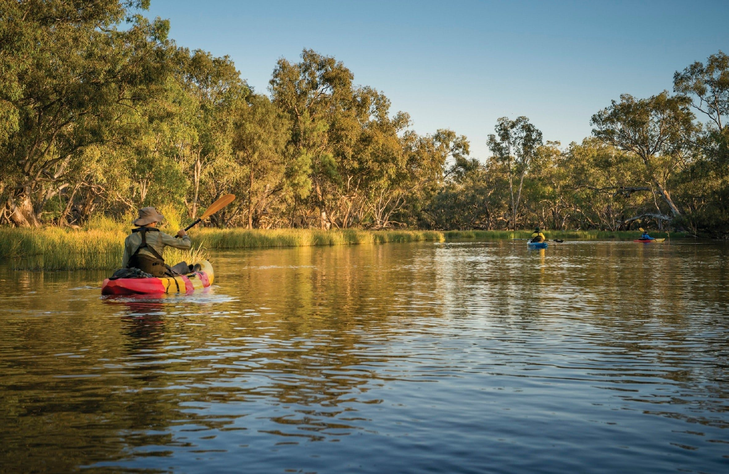 Macquarie Marshes Nature Reserve - Accommodation Tasmania