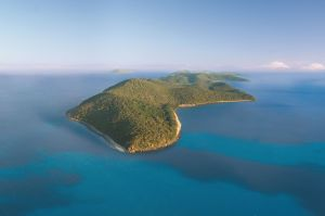 Orpheus Island - Accommodation Tasmania