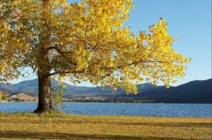 Khancoban - Accommodation Tasmania
