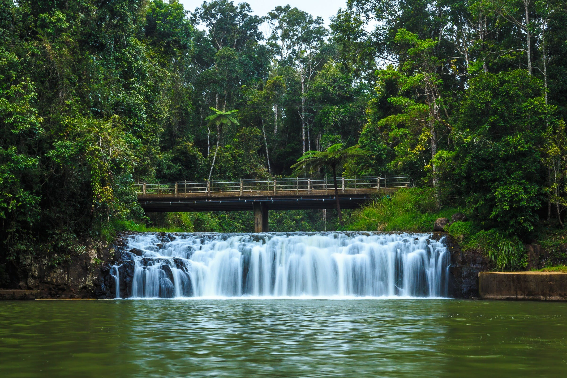 Malanda Falls - Accommodation Tasmania