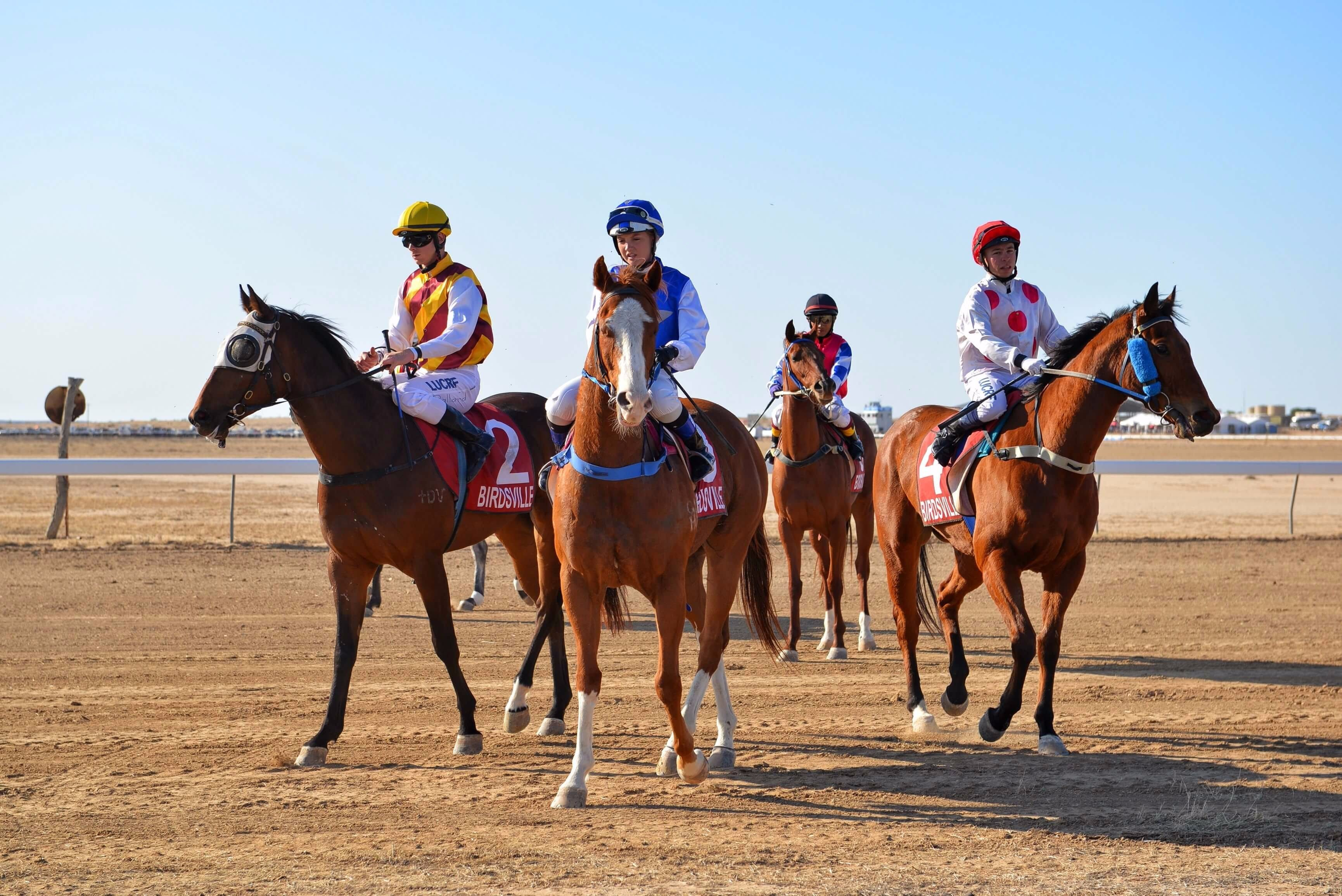 Simpson Desert Racing Carnival Trail - Accommodation Tasmania
