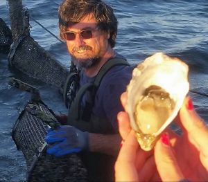 Southern Yorke Oysters - Accommodation Tasmania