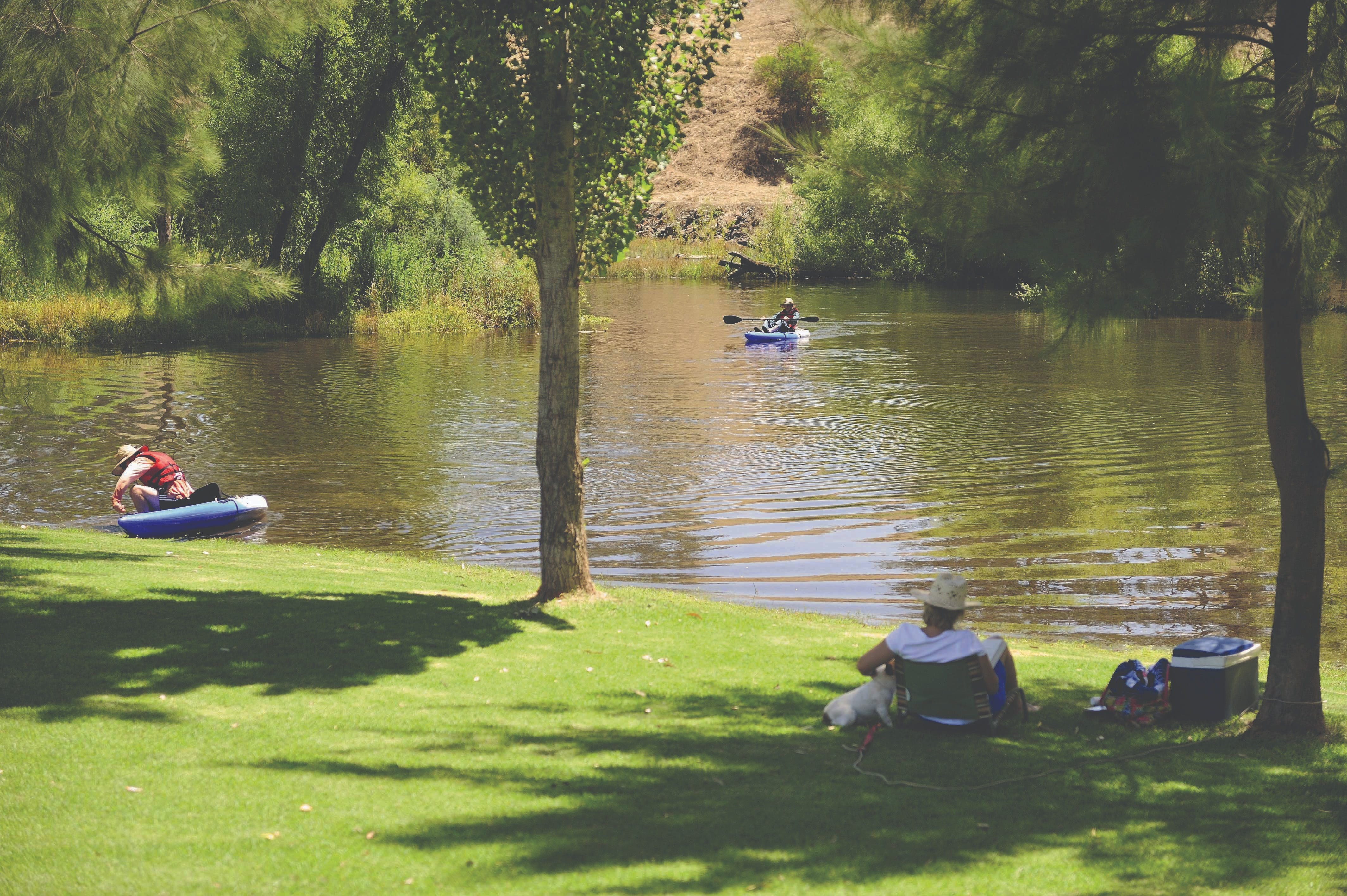 The Lions Junction Park - Tumut - Accommodation Tasmania