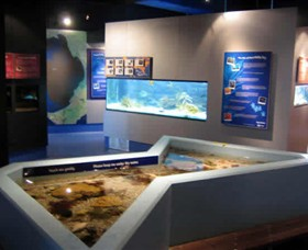 Marine and Freshwater Discovery Centre - Accommodation Tasmania